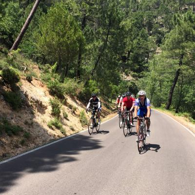 Road cycling tour in Malaga