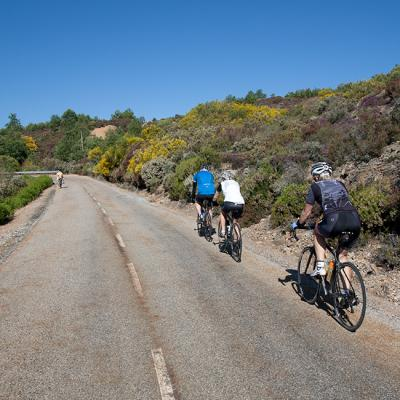 Customized Bike Tours in Spain